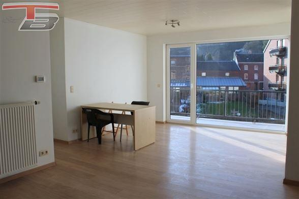 Appartement 2 chambres de 94m² entièrement rénové avec terrasse et jardin au centre de Trois-Ponts.